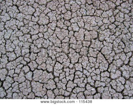Dry Mud