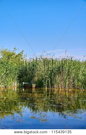 Old Boat In The Reeds
