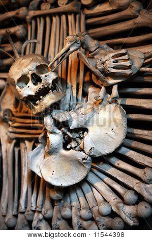 Scul And Bones