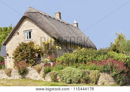 Traditional thatched roof stone Cotswold cottage