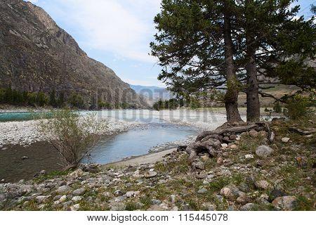 Katun River. Mountain Altai Landscape. Russia.
