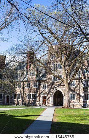 walkway through princeton university, USA.