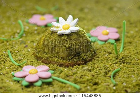 Pistachio desert decorated with daisy flowers
