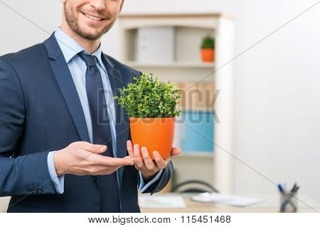 Vivacious office worker holding flower pot