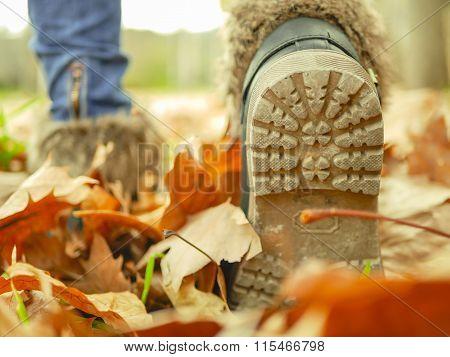 Autumn / walking on leaves
