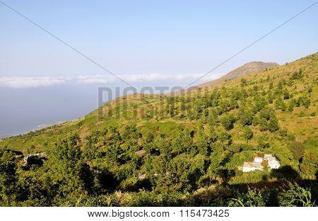 Mountainside Profile
