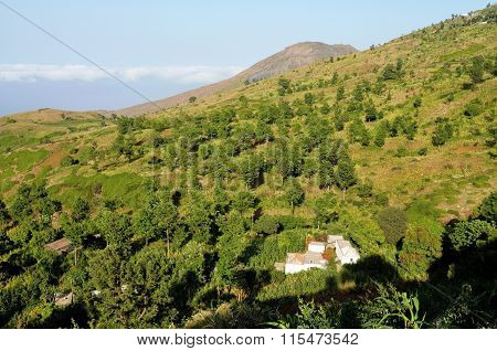 Farm Home In The Valley Of Ribeira Filipe