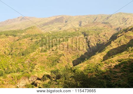 Water Gulley Leads To Dry River Banks