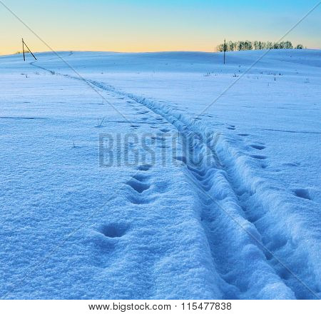 Ski Track On A Snow Field