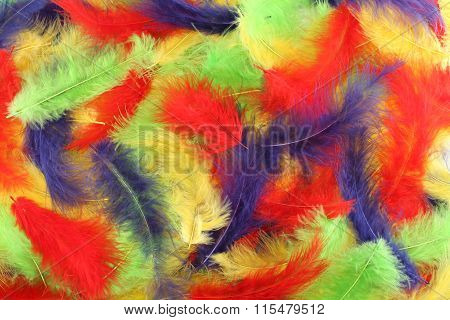 Background - small red, blue, green, yellow plumes situated irregularly