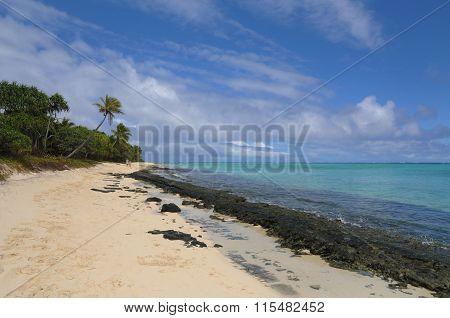 Mistery island beach