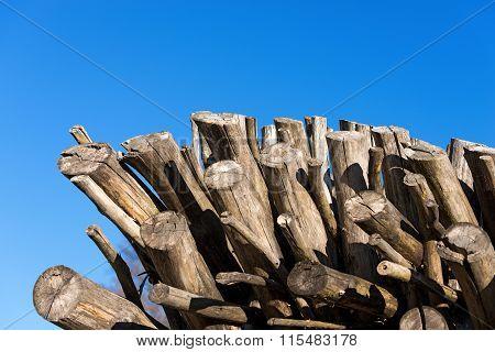 Dry Firewood On Blue Sky