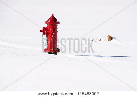 Fire Hydrant In The Smow