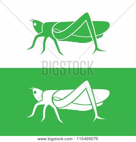 Vector Image Of An Grasshopper Design On White Background And Green Background