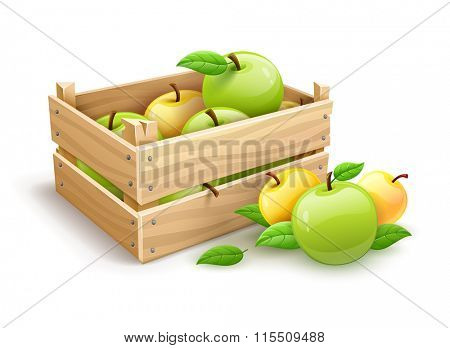 Ripe apple fruits garden harvest in wooden box. Isolated on white background. Rasterized illustration