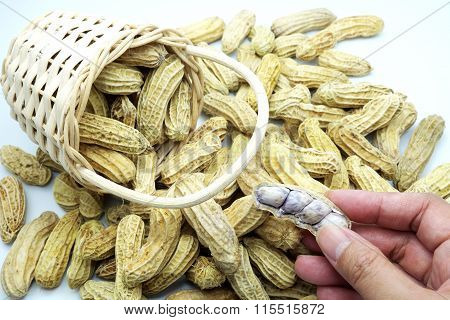Boiled peanuts  in/around wooden basket with hand.