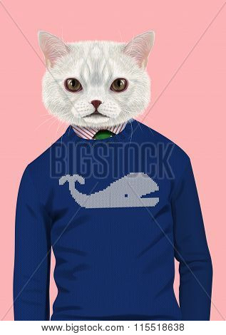 White Cat Dressed Up In Casual Style