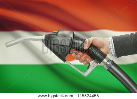 Fuel Pump Nozzle In Hand With National Flag On Background - Niger