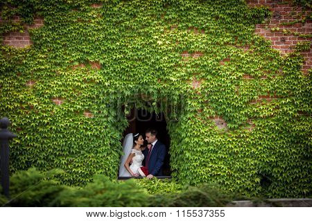 Fairytale Newlywed Romantic Couple Of Valentynes Posing In A N Old Castle Window Surrounded By Vines