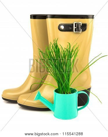 Rubber Yellow Boots With Spring Grass In The Blue Watering Can