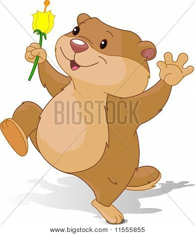 Groundhog Dancing With First Flower