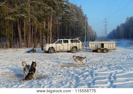 Husky team arrived for training