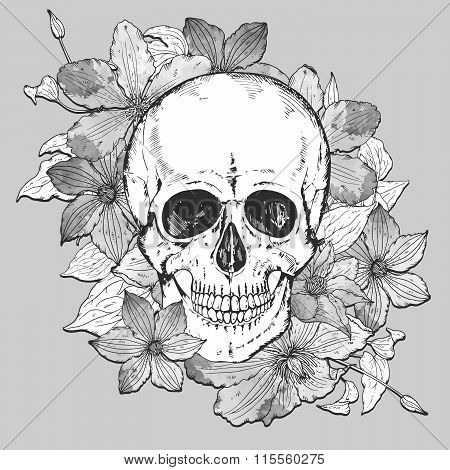 Vector Illustration With Hand Drawn Human Skull, Clematis Flowers