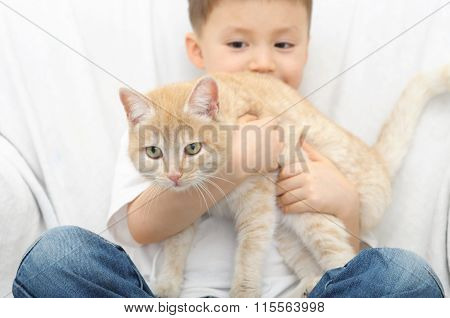 Ginger Cat Wants Escape From The  Arms Of Boy
