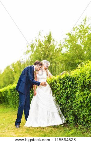 Wedding, Beautiful Romantic Bride and Groom Kissing and Embracing