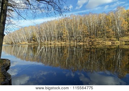 Reflection Of Trees And Clouds In A Pond