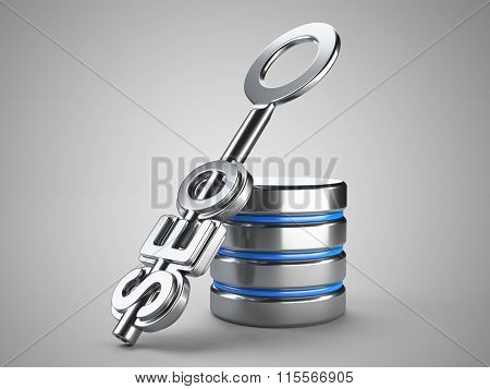 Seo Concept With Key And Database Sign