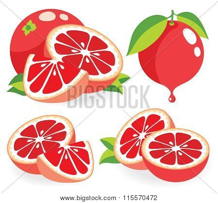 Pink Grapefruits Vector Illustrations