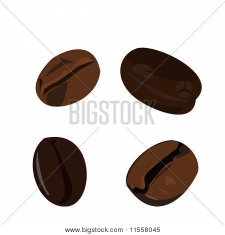 Realistic Illustration Coffee Bean