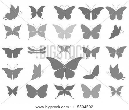 Silhouettes of beautiful butterflies vector illustration.