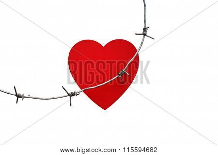 Barbed wire injures red heart