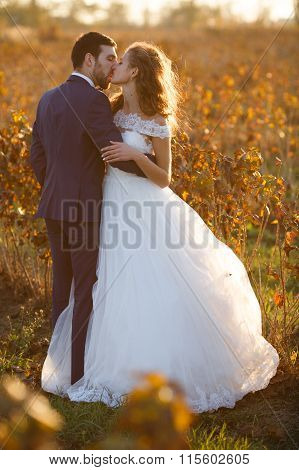 Fairytale Romantic Couple Of Newlyweds Hugging And Kissing At Sunset In Vineyard Field