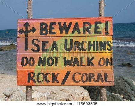 Colorful Tropical Sea Urchin Warning Sign
