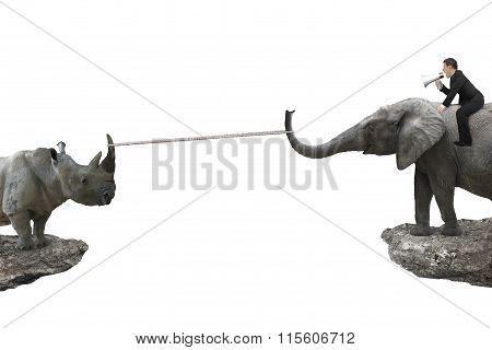 Man Sitting On Elephant Against Rhinoceros With Rope Pulling