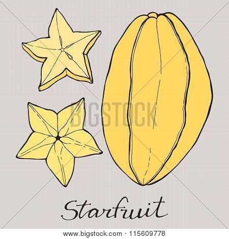 Carambola fruit or starfruit. Hand drawn cartoon fruits. Doodle drawing.