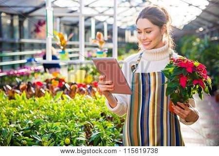Beautiful cheerful woman gardener in apron using tablet and holding plant in pot with colorful leaves in garden center