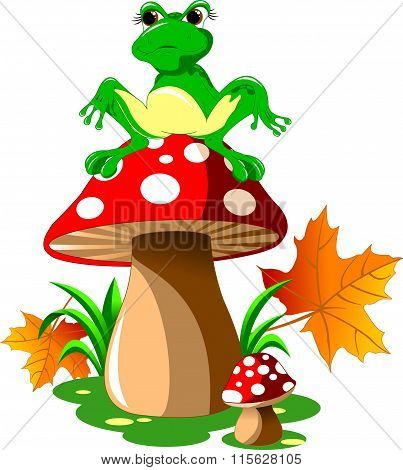 Frog And Mushroom