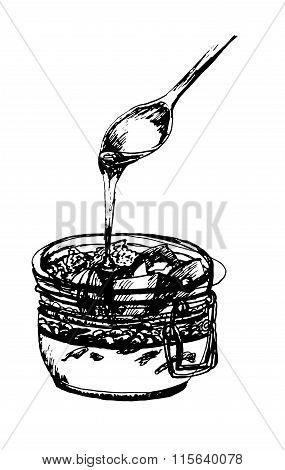 dessert spoon of honey flows in a jar with fruit, nuts and souffles, hand drawn ink sketch vector