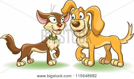 Cat And Dog Have Met