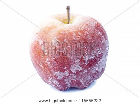 Apple Covered With Frost
