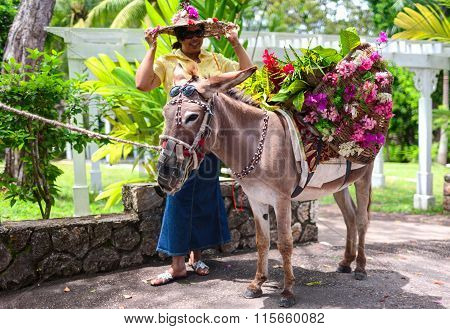 A woman with a bonnet and a donkey with basket of colorful flowers.