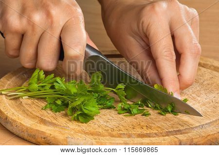 Hands Chopping Parsley Leaves On The Wooden Cutting Board