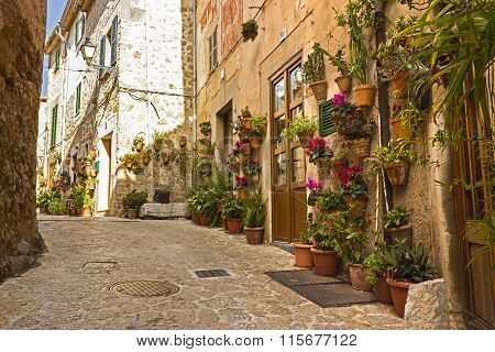 Valldemossa flowered wall