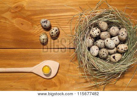 The Composition Of Quail Eggs And Wooden Spoon Lying In A Nest Of Grass On A Panel Of Vintage Brown