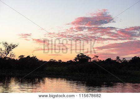 Sunrise In The Jungle.