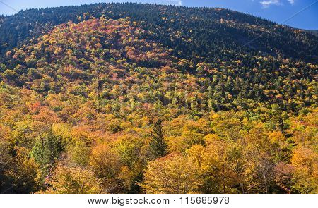 Colorful Autumn Landscape In White Mountain National Forest, New  Hampshire
